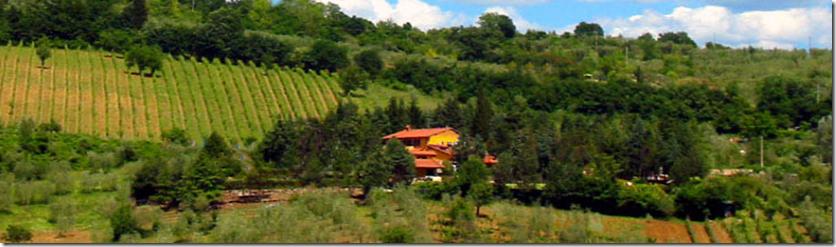VillaCafaggiolo-01